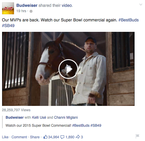 budweiser super bowl lost dog facebook ads